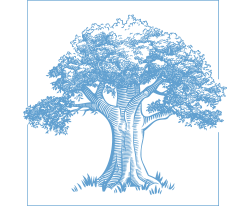 Deeply Rooted | Rhonda Sealey Logo